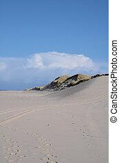 Sand Dune - sandy dunes on the island of Sylt