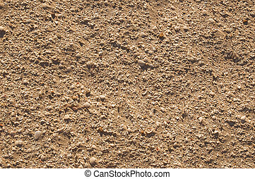 Sand dune texture  with many small sea shells