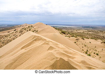 sand dune with bushes on a background of mountains