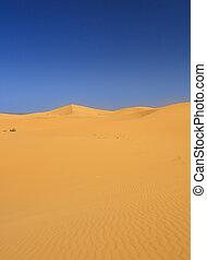 sand dunes and cloudless dark sky
