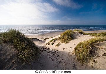 dunes and ocean - sand dunes and ocean in the netherlands