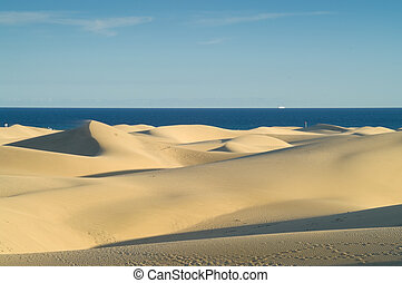 Sand dunes and sea