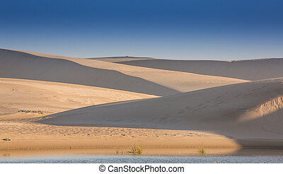 Sand Dunes and Water