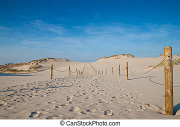 Sand dunes at Slowinski National Park. Poland.