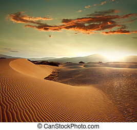 Sand dunes at sunset light on background of dramatic sky
