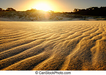 Sand dunes at sunset.