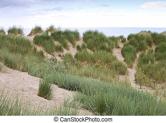 Sand dunes behind beach at Formby beach