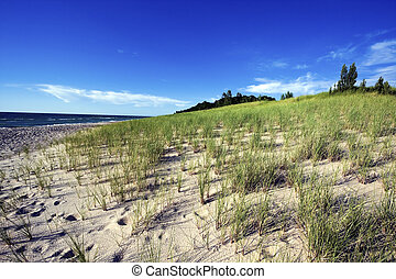 Sand Dunes by the shore of Lake Michigan