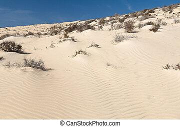 Sand Dunes, Fuerteventura