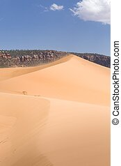 Sand dunes in a desert landscape, Coral Pink Sand Dunes, Utah