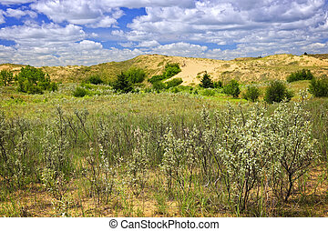 Sand dunes in Manitoba - Landscape of Spirit Sands dunes in...