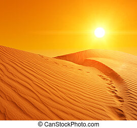 Sand dunes in Sahara - Beautiful sunset over the sand dunes...