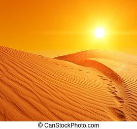 Sand dunes in Sahara - Beautiful sunset over the sand dunes...