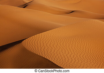 sand dunes in the desert