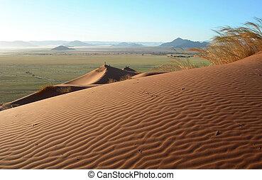 Sand dunes in the Kalahari desert - Sand dunes in the...