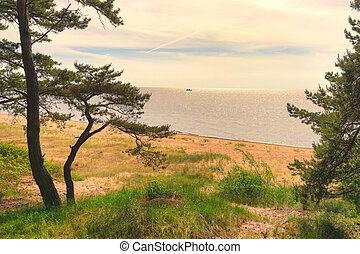 Sand dunes of the Baltic