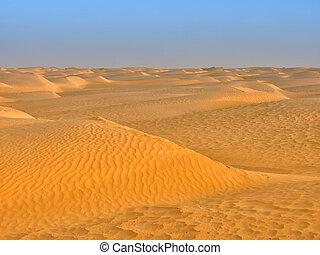 sand dunes of the desert