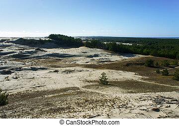 sand dunes, sand dunes on the sea beach
