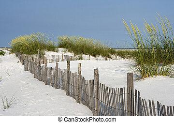 Sand Fence at Pensacola Beach - Sand fence among ripe sea...