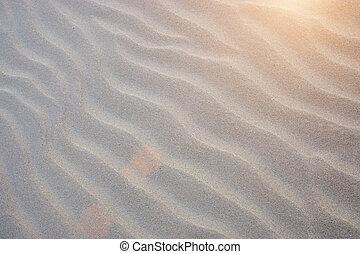 sand, fodrar, stranden, med, sunlight.