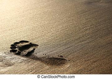 Sand Footprint - Big footprint on golden sand at sunset