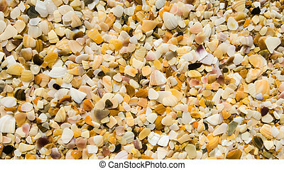 sand from pieces of seashells on the sea beach close-up