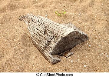 sand., holz, sinken, tot