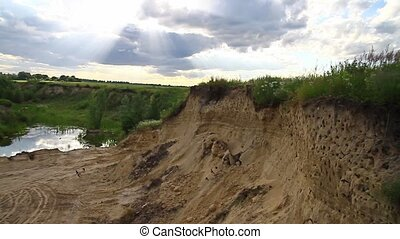 sand martins the sound of danger flock together in a heap