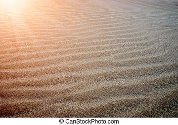 Sand on the beach.
