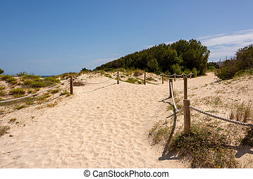 Sand paths through the protected dunes to Cala Agulla beach on the Spanish holiday island of Mallorca