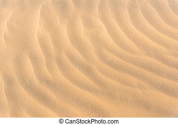 sand pattern from beach, summer background