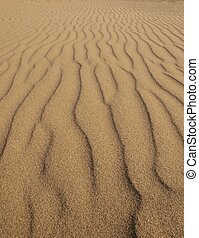 Sand pattern in vertical waves