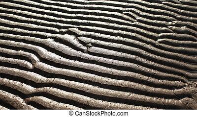 sand pattern zebra