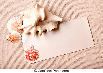 Sand piece of paper and shell
