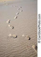 sand, resa, spår