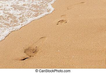 sand, sea, shore - sandy beach, sea shore with waves