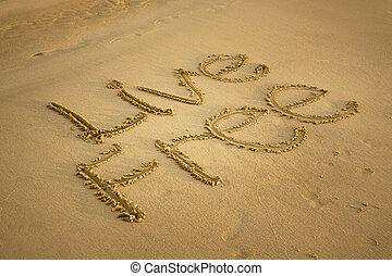 sand., spiaggia, scritto, libero, vivere