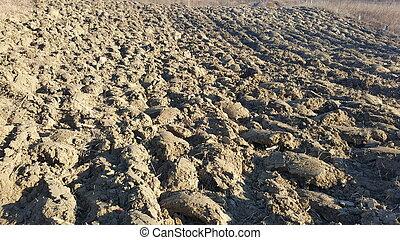 Sand texture background. Soil landscape