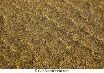 Sand Texture series - Sand texture on golden beach