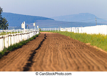 Sand Track Race Horses Training
