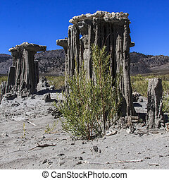 Sand Tufas at Mono Lake - The delicate sand tufas on Navy...