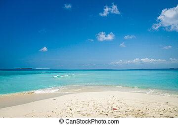 sand, von, sandstrand, karibisches meer