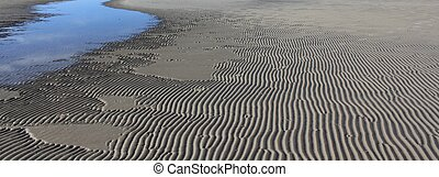 Sand Waves At Low Tide