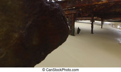 Sand with rusty metals - A medium shot of sands and rusty...