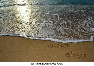 Sand writing 'carpe diem' - The phrase 'carpe diem' written ...