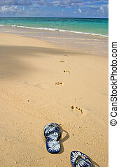 sandals & footprints on the shore