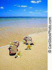 sandals, sandstrand, plumeria, blüten
