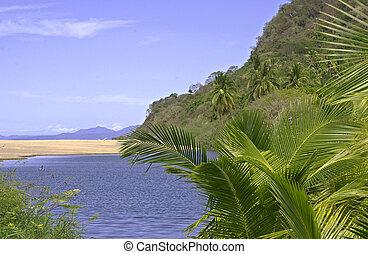 sandbank, 太平洋, 河口, 海洋