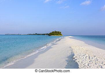 Sandbank in tropical island, Maldives - Sandbank in ...
