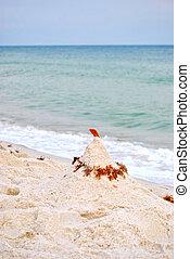 Sandcastle awaits high tide